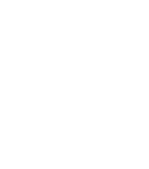 NZ School of Acupuncture